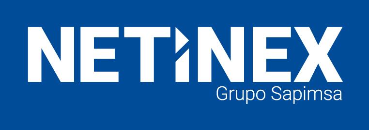 NETINEX | Consultoría de organización del sistema SAP